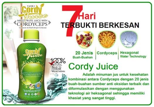 Toko Online Sinergy 2 kekuatan besar antara Cordyceps & 20 jenis buah-buahan menghasilkan Formula baru yang diberi nama CODI JUICE, diolah dengan menggunakan teknologi Biotech. Kasiatnya sangat mujarab terutama bila dikonsumsi oleh pasien yang sakit parah / kronis